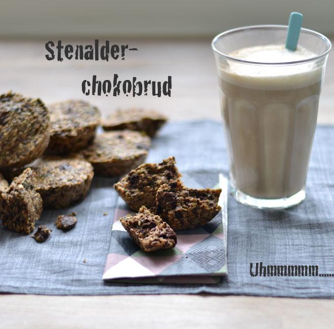 Stenalderbrud3