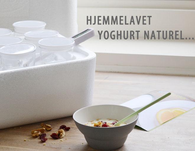Yoghurt_1_1