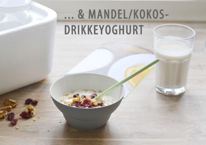 Yoghurt_2